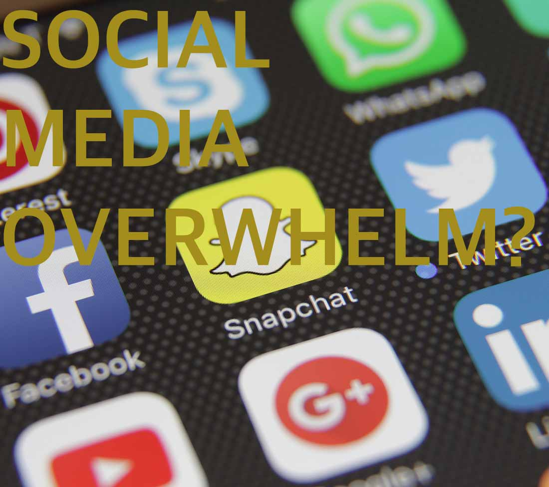 This^ Digital Agency helps with social media overwhelm